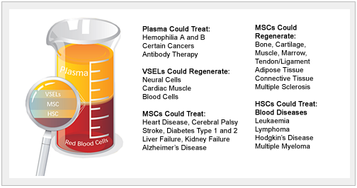 Whole Cord Blood Stem Cell Benefits