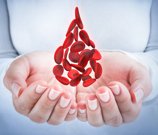 blood cells in hands, shaped blood drop | MedCells Cord Blood Banking